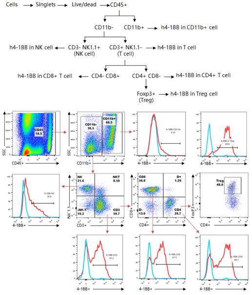 Typical-Flow-Cytometry