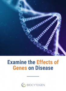 examine the effects of genes on disease